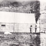 Spencer 2nd Hut 1936 walls of malthoid and tin roof