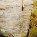 Francis Dunn's Headstone